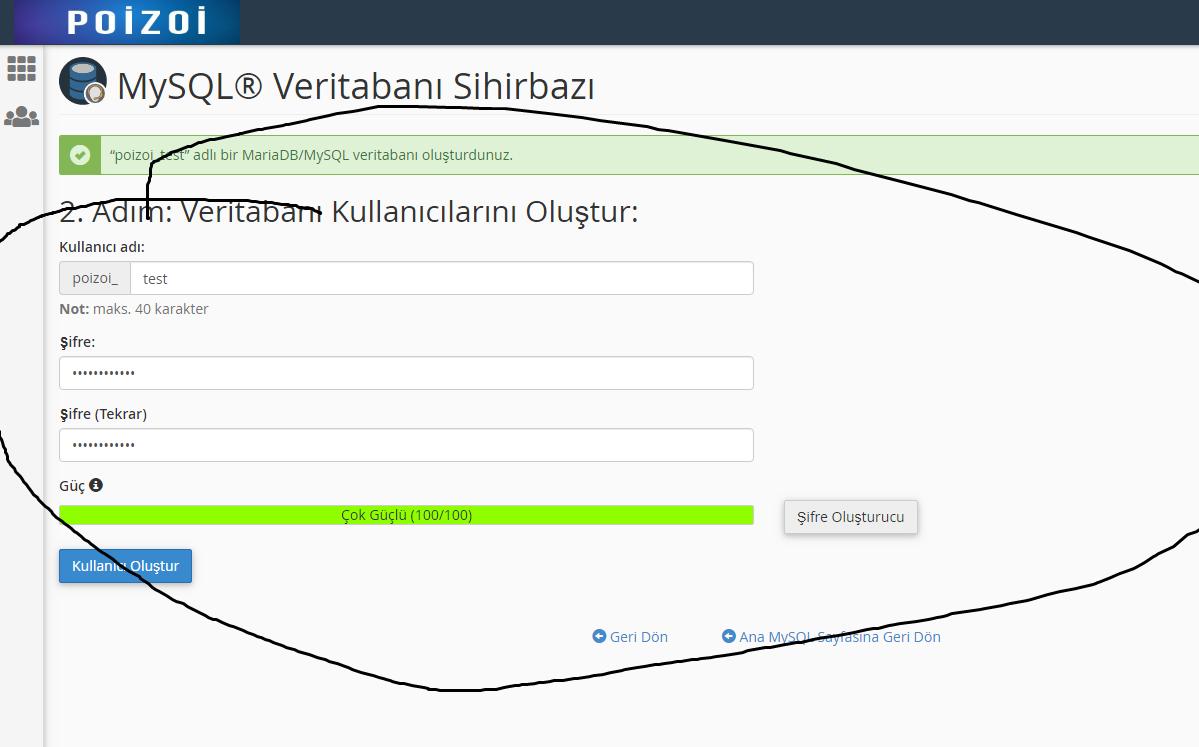 poizoi-hosting domain